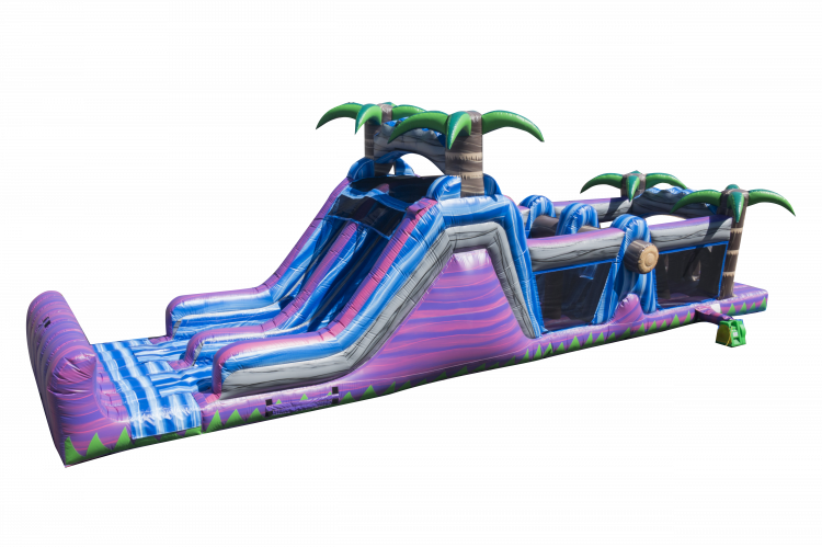 50ft Purple People Eater with 16ft Slide